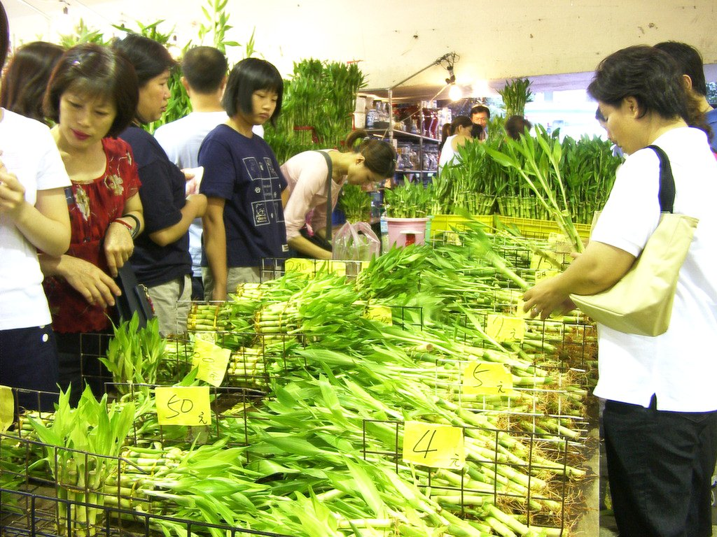 台北の花市でラッキーバンブー