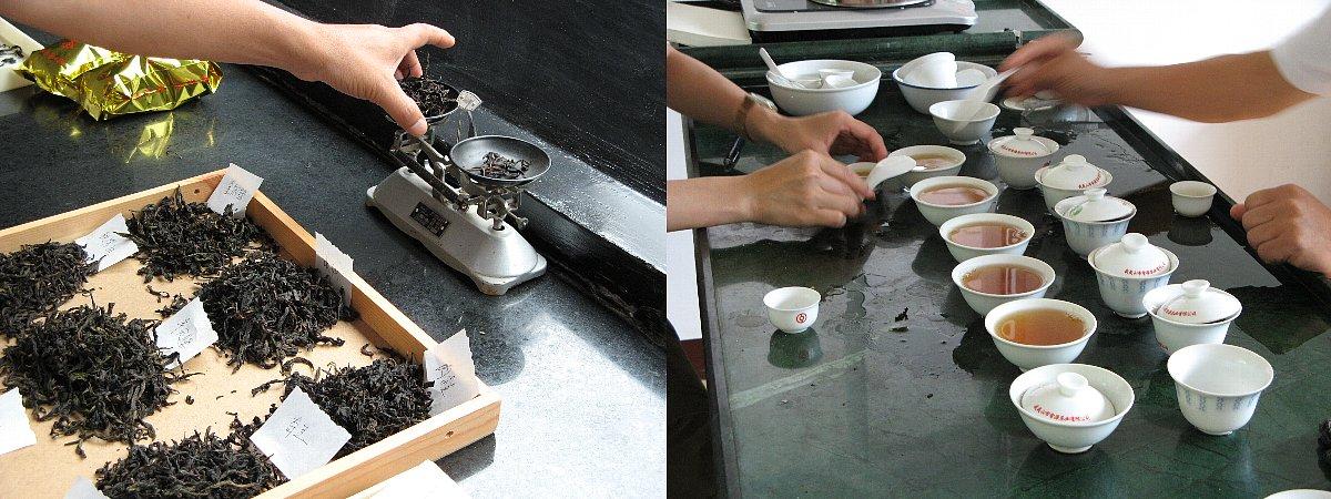武夷岩茶をテイスティング