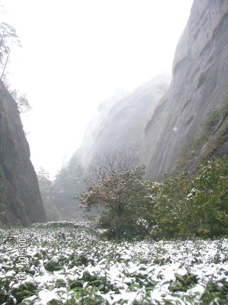 冬の武夷山